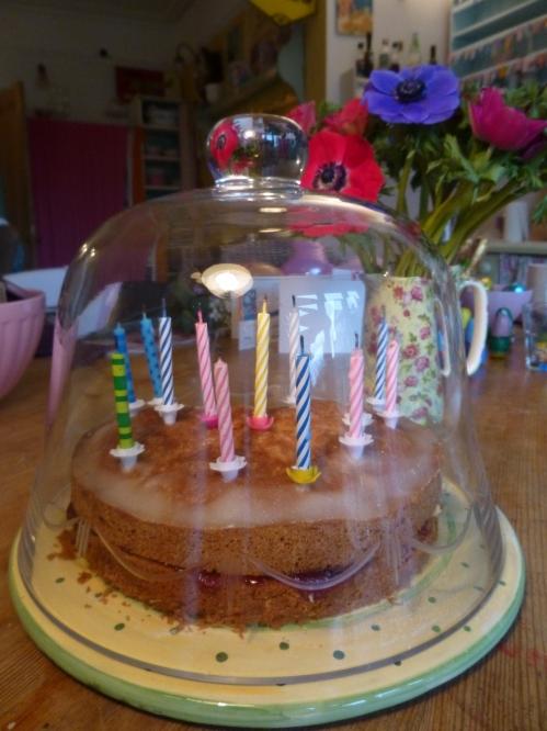 birthday cake, stork, anenomies 004
