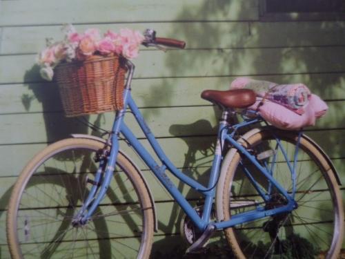 Selina's bike